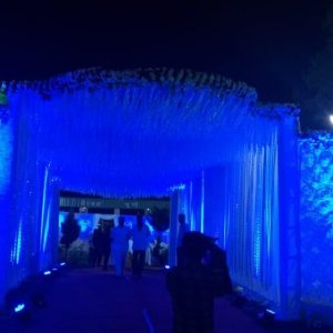 blue lightings, entrance, decoration, wedding decoration