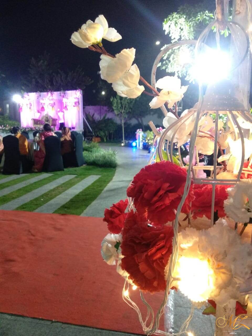 person, festival, crowd, lighting, flower, plant, petal