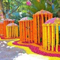 wedding planner, wedding management, wedding mandap, weddingwire, flowers, decoration